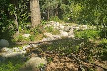 Kruckeberg Botanic Garden, Shoreline, United States