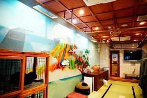 ねこ浴場&ねこ旅籠 保護猫カフェ ネコリパブリック大阪