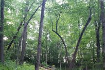 Jackson Park, Hendersonville, United States