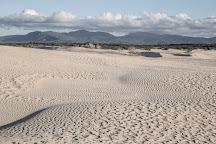 Big Drift, Wilsons Promontory National Park, Australia
