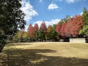トウカエデ公園