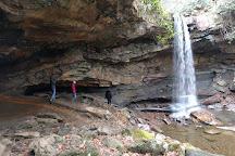 Cucumber Falls, Ohiopyle, United States