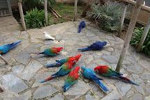 Jardin del Papagayo, Benicarlo, Spain