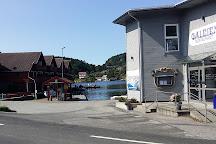 Trysnes Marina & Feriesenter, Sogne, Norway