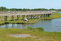 Assateague Island National Seashore, Assateague Island, United States