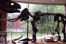 Joseph Moore Museum, Richmond, United States