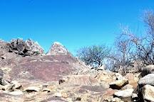 Rock Engravings at Peet Alberts Koppie, Kamanjab, Namibia