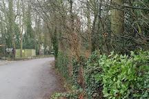 Quex Park Paintball, Birchington, United Kingdom