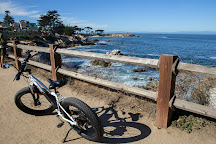 Big Sur Adventures, Pacific Grove, United States