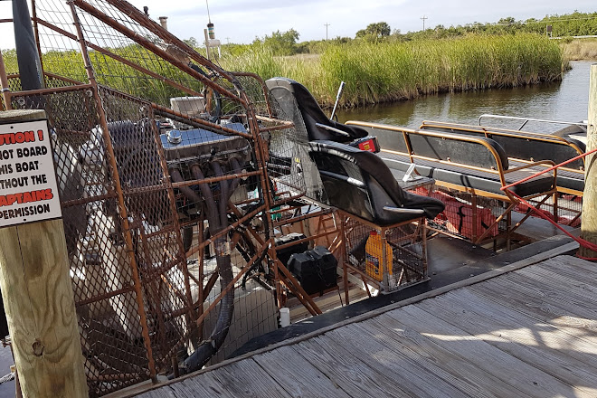 Visit Corey Billie S Airboat Rides On Your Trip To Naples