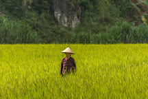 Kai Adventure Tours, Ha Giang, Vietnam