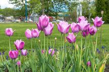 Parc de l'Ile-Pozer, Saint Georges, Canada
