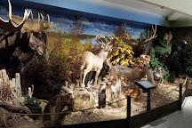 The OFAH Mario Cortellucci Hunting & Fishing Heritage Centre, Peterborough, Canada