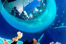 Ocean Vue Adventures, Key West, United States