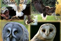 Kielder Water Bird of Prey Centre, Kielder, United Kingdom