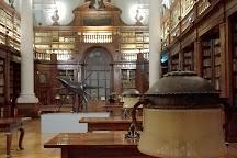 Museo di Palazzo Poggi, Bologna, Italy