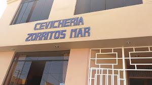 Zorritos Mar 4