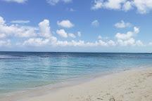 Coral Gardens Reef, Providenciales, Turks and Caicos