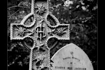 Abney Park Cemetery, London, United Kingdom