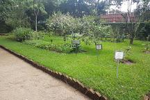 Jardin Botanico, Guatemala City, Guatemala