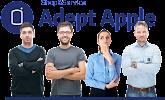 Adept Apple, Гоголевская улица на фото Тулы