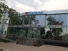 SRL Daiana - Comert на фото Унген