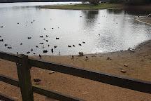 Daventry Country Park, Daventry, United Kingdom