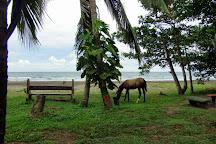 Playa Negra, Cahuita, Costa Rica