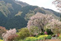 Ryushuin, Akiruno, Japan