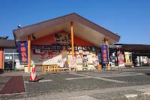 Maesawa Service Area Inbound, Oshu, Japan