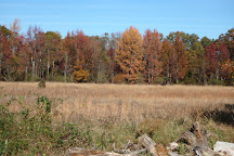 Belleplain State Forest, Woodbine, United States