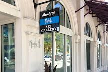 AlexArt International Art Gallery, Sarasota, United States