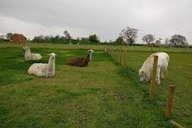 Hall Farm Park, Market Rasen, United Kingdom