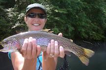 Anglers Advantage, Branson, United States