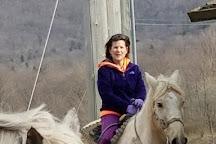 Mountain Trail Rides Horseback Riding & More, Davis, United States