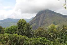 Ella Rocks, Ella, Sri Lanka