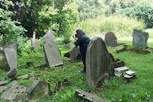 Stary Cmentarz Lublin, Lublin, Poland