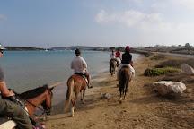 Kokou Horse Riding Center, Naoussa, Greece