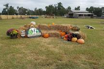 Steeds Dairy Farm, Grovetown, United States