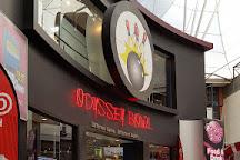 Odyssey Bowl, Belfast, United Kingdom