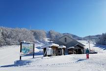 Wakabuna Kogen Ski Areas, Sekikawa-mura, Japan