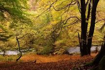 Goyt Valley, Buxton, United Kingdom