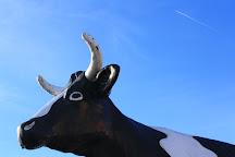 Kadie the Cow of Columbus, Columbus, United States