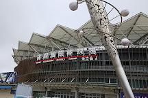Taoyuan International Baseball Stadium, Zhongli, Taiwan