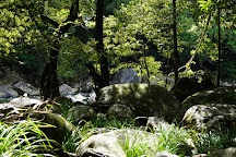 Daintree National Park, Cape Tribulation, Australia