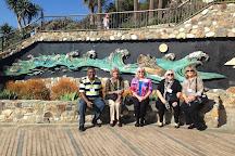Savor Laguna, Laguna Beach, United States