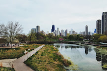 South Pond, Chicago, United States