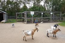Elmvale Jungle Zoo, Elmvale, Canada