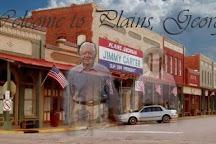 Plain Peanuts Store, Plains, United States