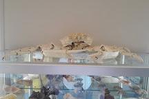 Corfu Shell Museum, Corfu, Greece